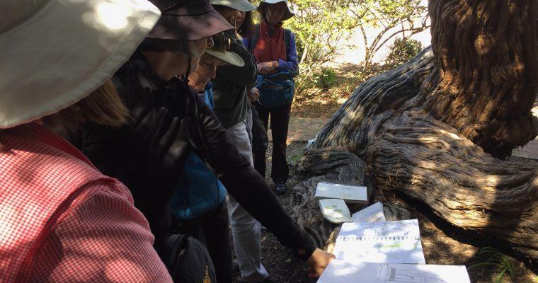 Monterey Bay Nature Journal Club- Virtual Sundays
