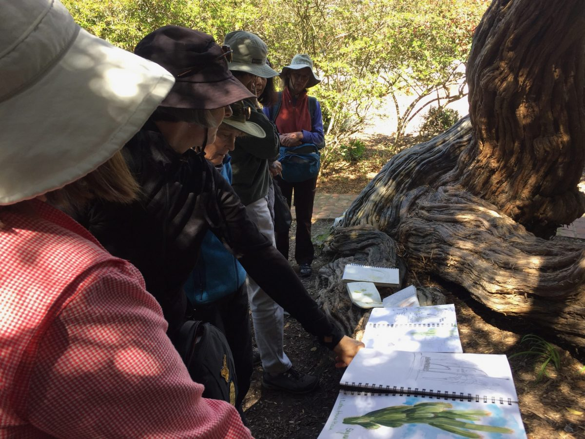 Monterey Bay Nature Journal Club- Virtual Sundays