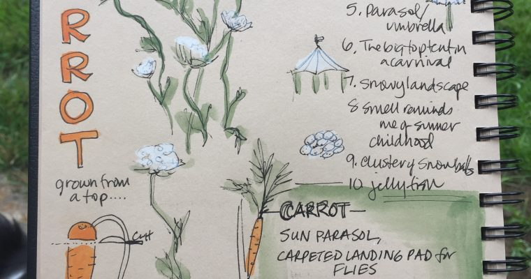 More Words: Adding Poetry to your Nature Journal (Video)