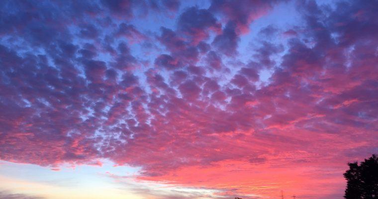 Skyward Salutations: Clouds (Video)