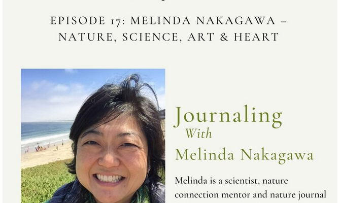 Journaling with Nature Podcast Interview