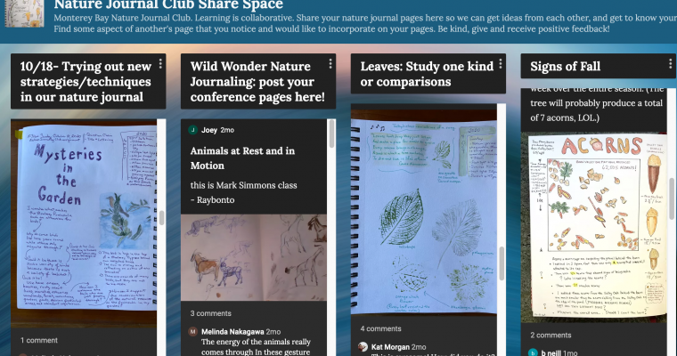 MB Nature Journal Club Sharing Page