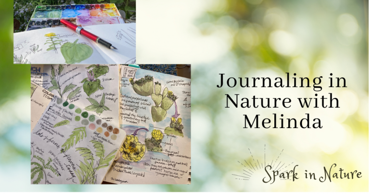 Current Nature Journaling Classes